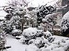 20140208_heavy_snow
