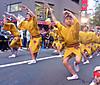 Awa_dance_festival08