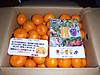 Donation_katsuragi_2014
