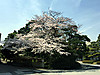 Imperial_palace09
